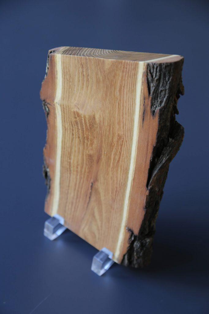 """""""Das dicke Brett"""" - die Auszeichnung für besonderes Freien-Engagement. Ein Holzbrett mit Rinde auf zwei Plastikfüßen."""